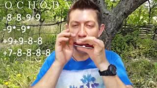 Гангстерский рифф+Передув на 9-м отверстии. Урок№12 (Overbend, Overdraw)
