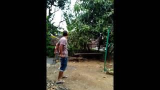 Download Video berdarah xxx MP3 3GP MP4