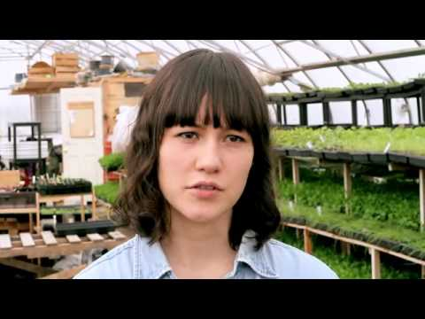 Organic Agriculture in the City of Toronto   Fresh City Farms   YouTube