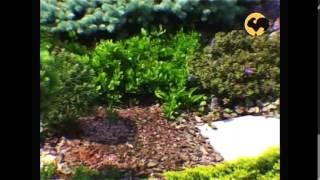 Маленький сад. Ландшафтные хитрости серия 38