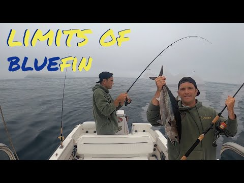 My FIRST Tuna And LIMITS Of BLUEFIN ||| HONEY HOLE VLOGS