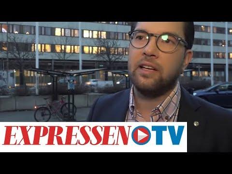 """Jimmie Åkesson SD: """"Signaler via talmannen och en väldig massa andra sammanhang"""""""