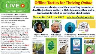 Explore Offline Tactics for Thriving Online