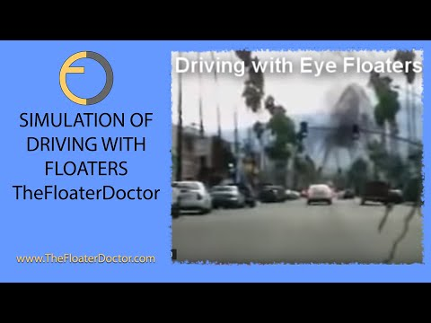 Eye Floaters - Driving with Vitreous Floaters (simulation ...