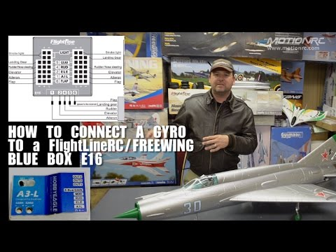 FlightLineRC/Freewing Blue Box