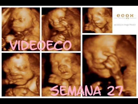 Ecograf a 4d 27 semanas embarazo feto desarrollo y movimientos dentro de tu vientre youtube - 25 semanas de embarazo cuantos meses son ...