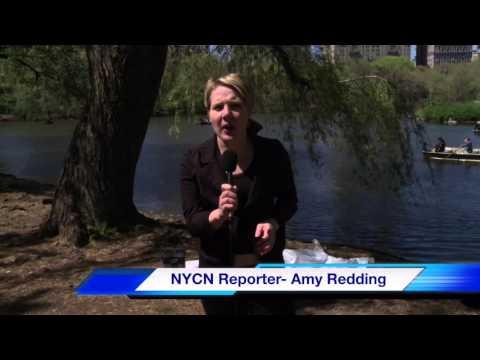 news Reporter iMovie