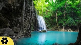 Healing Meditation Music, Relaxing Music, Music for Stress Relief, Background Music, ✿2968C