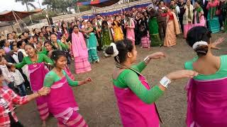 Mech kachari dance in Magh utsav 2018.....