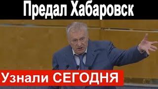🔥Жириновский предал Хабаровск и Сергея Фургала 🔥