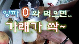 #마늘꿀저림#양파의효능#양파를 이렇게 먹으면 가래가 .…