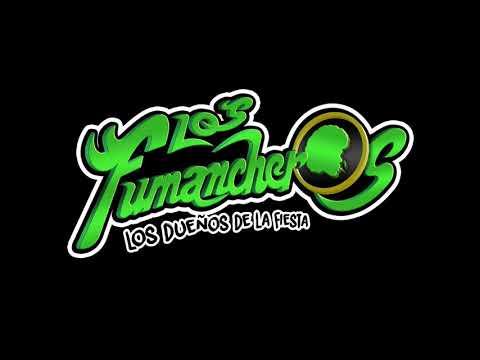 Tu me gustas a mi - Los Fumancheros (Lyric Video)