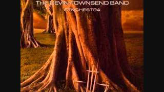 Devin Townsend Band - Notes From Africa