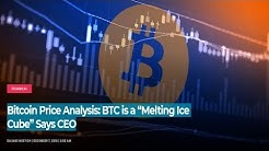 "Bitcoin Price Analysis: BTC is a ""Melting Ice Cube"" Says CEO 