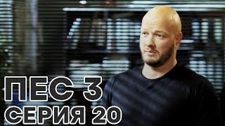Сериал ПЕС - 3 сезон - 20 серия - ВСЕ СЕРИИ смотреть онлайн | СЕРИАЛЫ ICTV