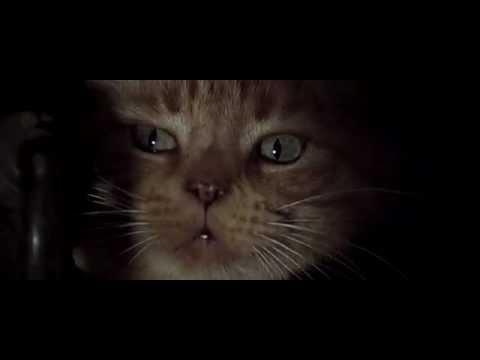 alien 1979 scene with jonesy ripley 39 s cat youtube. Black Bedroom Furniture Sets. Home Design Ideas