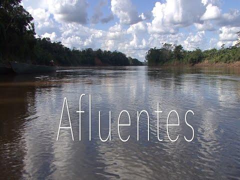 Ayahuasca Documentary / AFLUENTES (Granada Centre for Visual Anthropology)