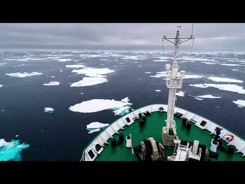 A sea of ice