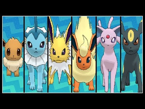 FULL EEVEE EVOLUTION TEAM!