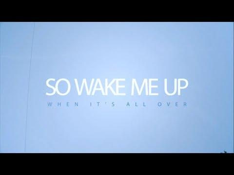 Avicii - Wake Me Up (Nicole Cross Official Lyrics Video)