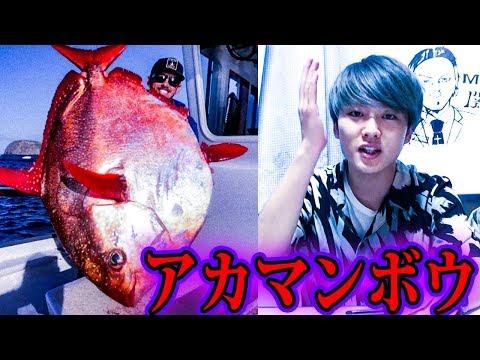 マグロの寿司には別の魚が使われている【都市伝説】