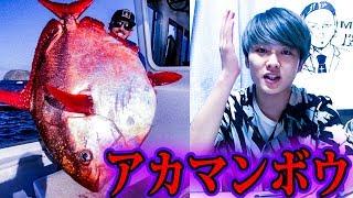 マグロの寿司には別の魚が使われている【都市伝説】 thumbnail