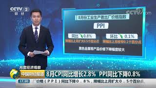 [中国财经报道]月度经济观察 8月CPI同比增长2.8% PPI同比下降0.8%| CCTV财经