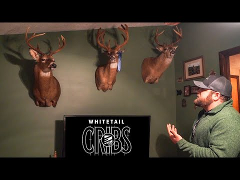 Whitetail Cribs: Rare Velvet Buck And PA Taxidermy Studio