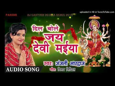 2018-19 Anjali Bhardwaj navratri DJ remix song Aa gaya