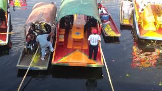Chinampas de xochimilco