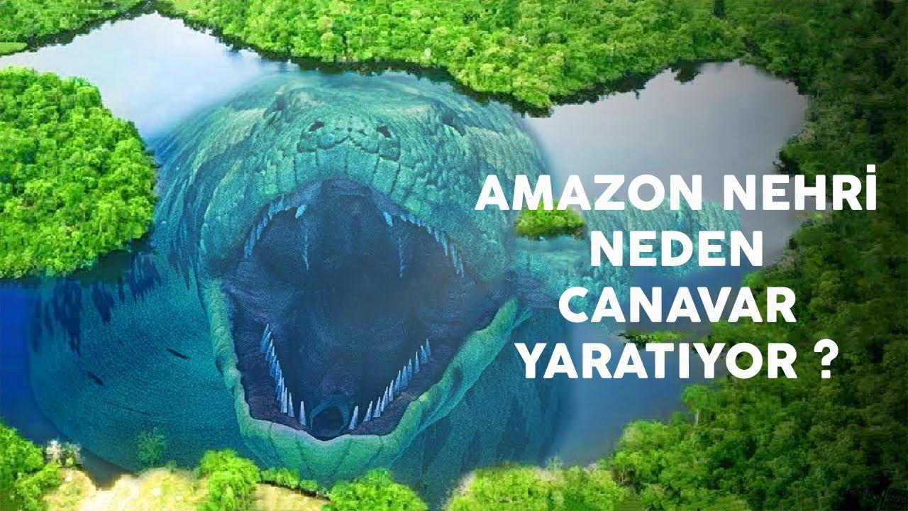 Amazon Nehri Neden Canavar Yaratıyor? Sonunda Gizem Çözüldü