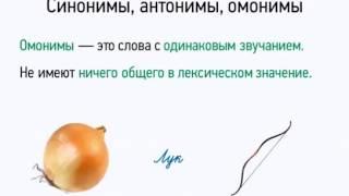 Синонимы, антонимы, омонимы
