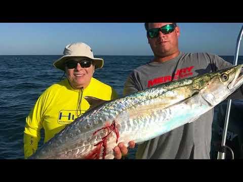 Clearwater Beach Fishing Charters - Capt. Jim Bennett - Trophy-Trips
