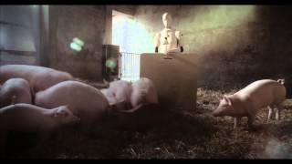 Rutyna na wsi rani i zabija – spot 30 sekund