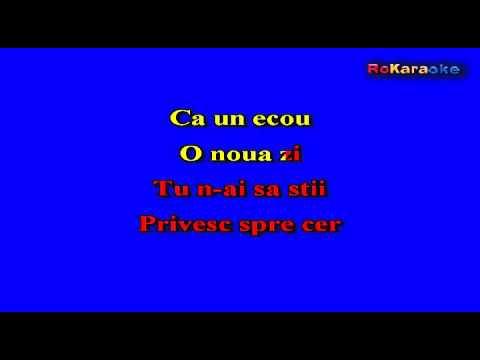 3 SUD EST-Vorbe care dor Karaoke