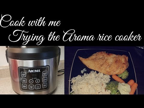 Review & Trying The Aroma Rice Cooker/Cook With Me