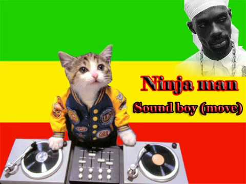 Ninja man - sound boy (love fever riddim)