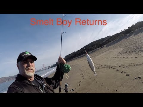 Smelt Boy Returns