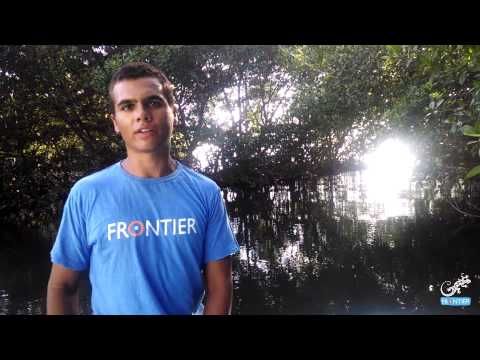 Video Blog by David Soares: Diving has become second nature to me!