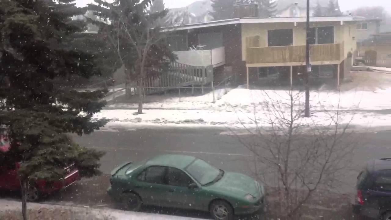 Calgary weather today  YouTube