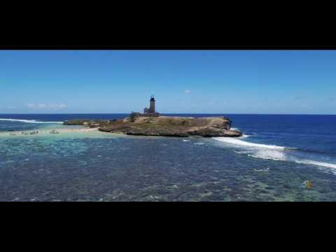 WittyDonut Mauritius- Ile au Phare