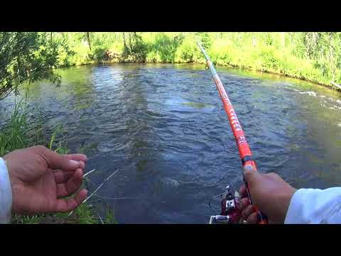 Рыбалка на Сибирской реке