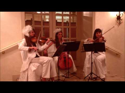 Diamonds are forever - струнное трио Violin Group DOLLS
