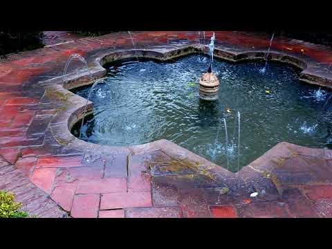 recogiendo-poemas-por-la-alhambra,-granada,-españa--25