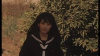 岡本舞子 - ハートの扉