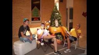 LPI summer internship 2010