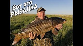 Рыбалка на паук Сибирские реки богатые рыбой не перестают радовать Сазаний рай Рыбалка 2020