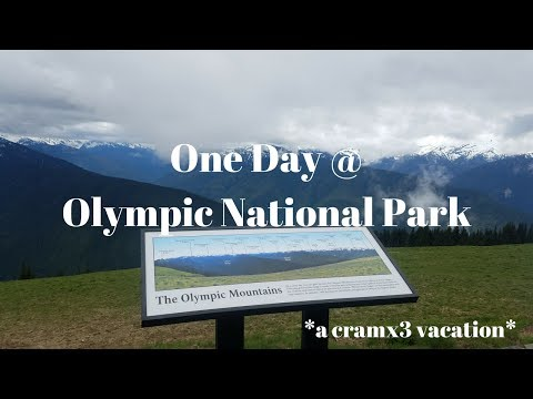One Day at Olympic National Park