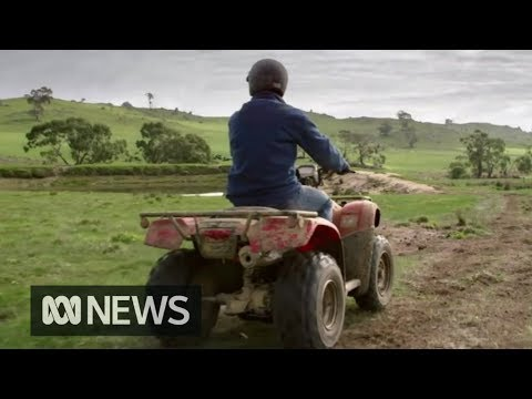 Quad bike safety in spotlight as Government looks set to introduce new laws | ABC News