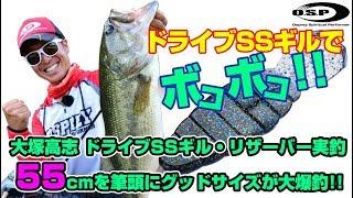 大塚高志 ドライブSSギル・リザーバー実釣 55cmを筆頭にグッドサイズが大爆釣!!